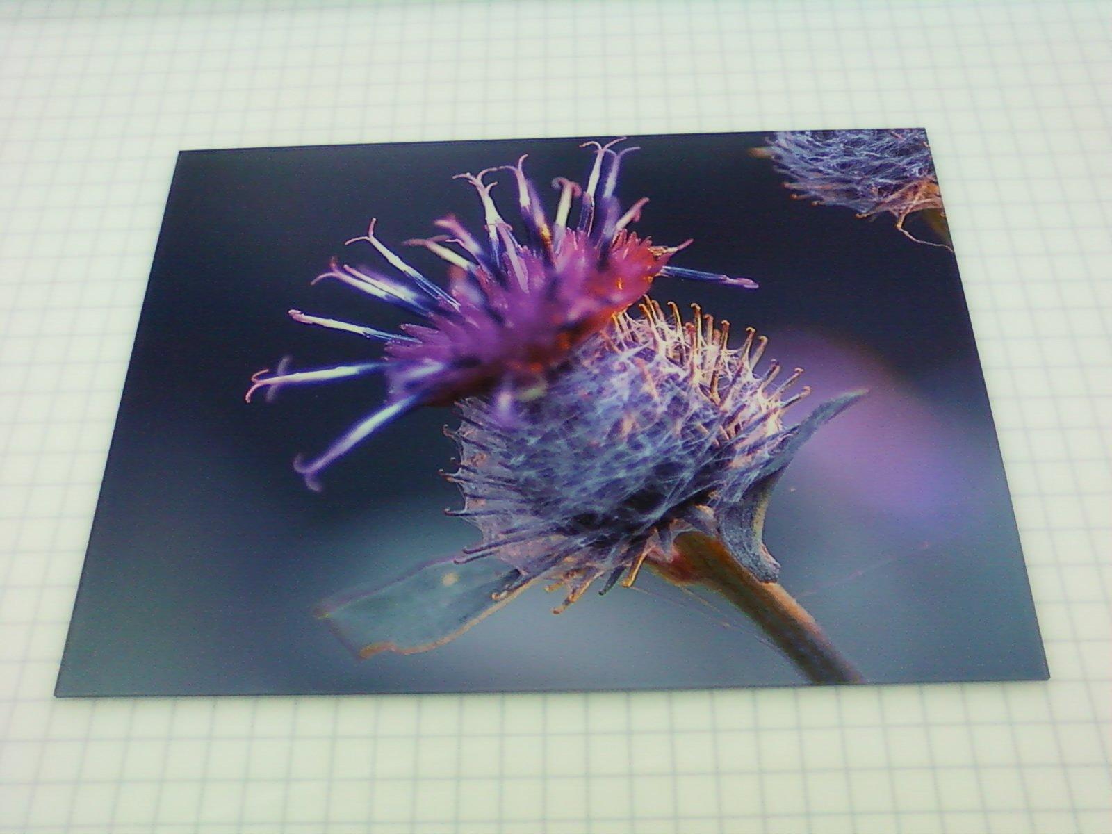 Acrylic Photo Frames & Prints | Executive Printers of Florida